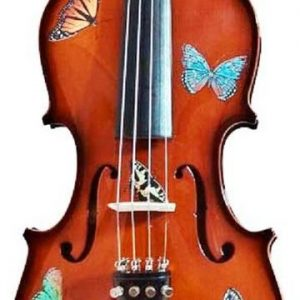 RV-BUTTERFLY DREAM NATURAL VIOLIN OUTFIT KIDS VIOLIN